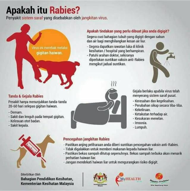 Info penyakit anjing gila