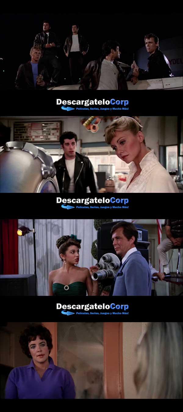 Descargar Vaselina HD 1080p Latino 1978
