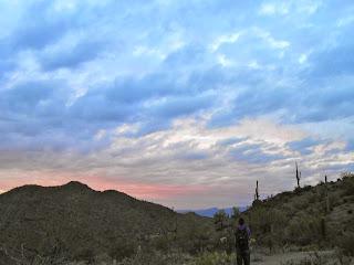 beautiful sunset hike saguaro national park