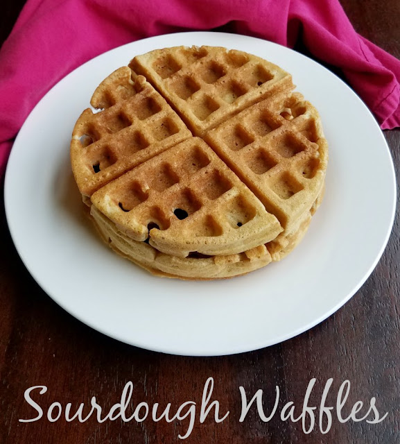 Sourdough waffles are full of flavor, tender as can be and oh so good! So go ahead and break out the syrup and warm up those waffle irons!