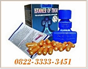 Agen Hammer Of Thor Asli di Luwuk 082233333451