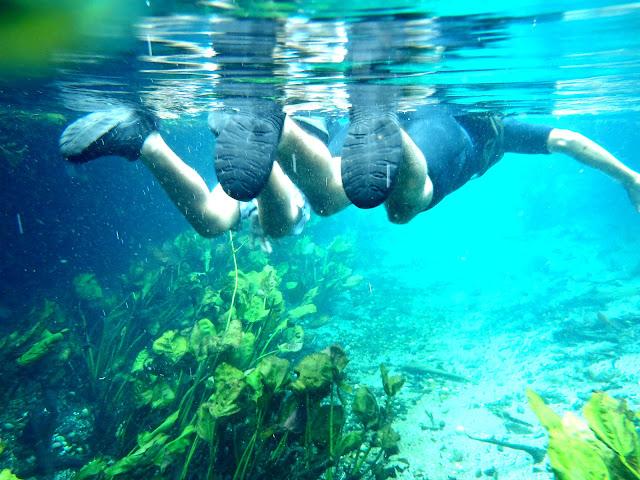 Aquário natural, em Bonito - MS - @viajarhei