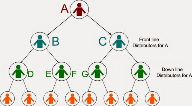 Mô hình trả thưởng nhị phân - Phần mềm đa cấp ủy thác đầu tư tài chính