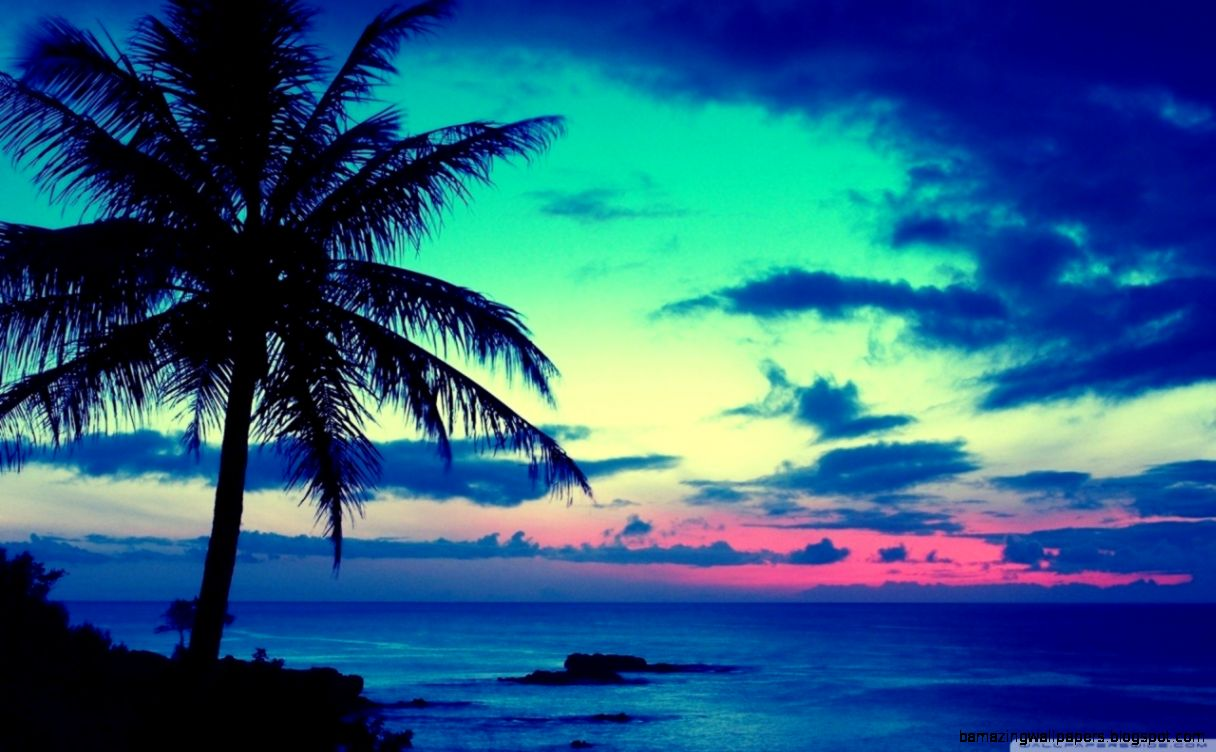 Hd Tropical Island Beach Paradise Wallpapers And Backgrounds: Tropical Sunrise Wallpaper