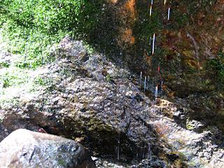 Water drops refracting light at Rio Viejo