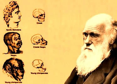 Charles darwin and herbert spencer