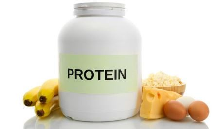 Fungsi Protein Bagi Tubuh