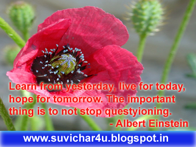 Learn from yesterday, live for today, hope for tomorrow. The important thing is to not stop questyioning.