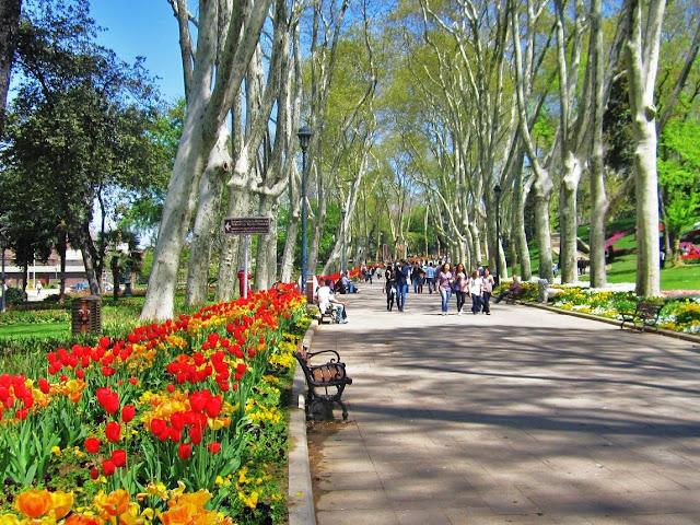 Flores e árvores do Parque Gülhane em Istambul