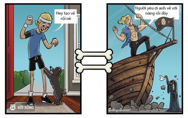 Cười té ghế với bộ ảnh Thế giới qua góc nhìn của một chú chó thì trông như nào?