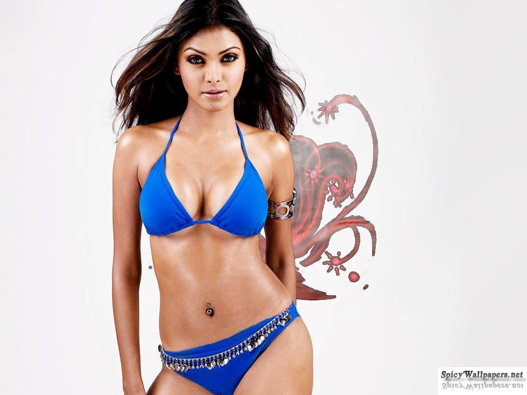 Actress Shraddha Arya Bikini Stills: ALL COLLECTION WALLPAPERS: Sherlyn Chopra Hot Stills