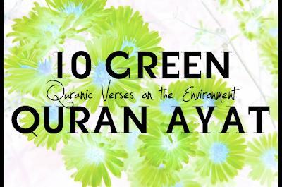environment verses from quran