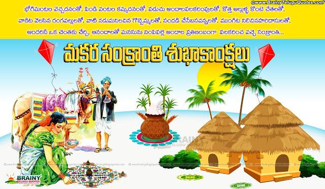 Makara Sankranti Wishes Quotes hd wallpapers-Telugu Sankranti informaton