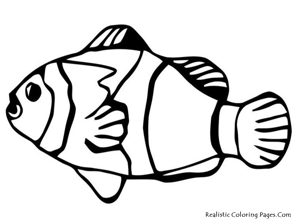 Nemo fish coloring pages realistic coloring pages for Printable fish coloring pages