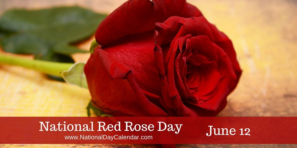 https://3.bp.blogspot.com/-YYe9W7G6RN8/V10yuuTmqHI/AAAAAAABHrI/XzJ7K_pjCJwUleIByRh_Ab9Vr2hM7TalgCLcB/s1600/National-Red-Rose-Day-June-12-1024x512.jpg