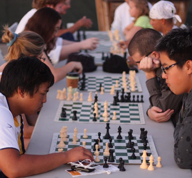 Growth in Participation Spurs First IHSA Chess Sectionals, Metamora Herald