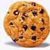 Apa itu cookies dan kenapa dinamakan cookies?