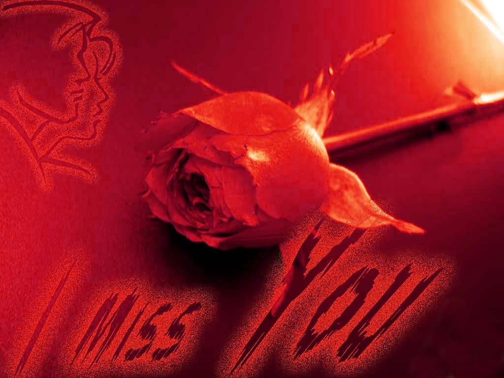 I Miss You Images  HD Miss You Wallpapers Photos