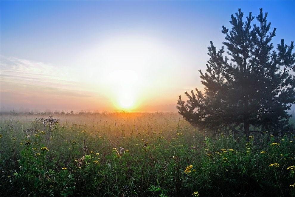 Картинки утро день вечер ночь природа