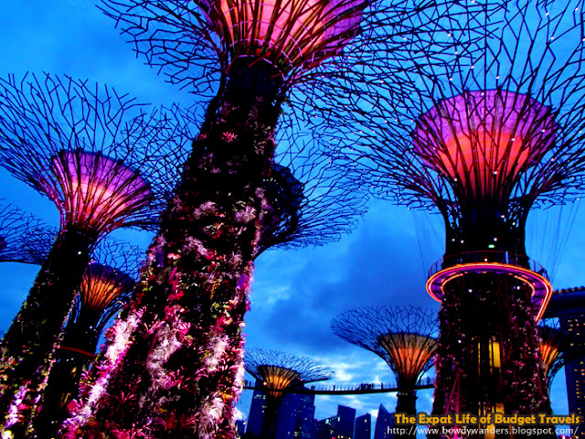 bowdywanders.com Singapore Travel Blog Philippines Photo :: Singapore :: Gardens by the Bay – Flower Dome