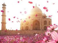 Diklaim Umat Hindu, Arkeolog: Taj Mahal Adalah Makam Muslim Bukan Kuil Hindu