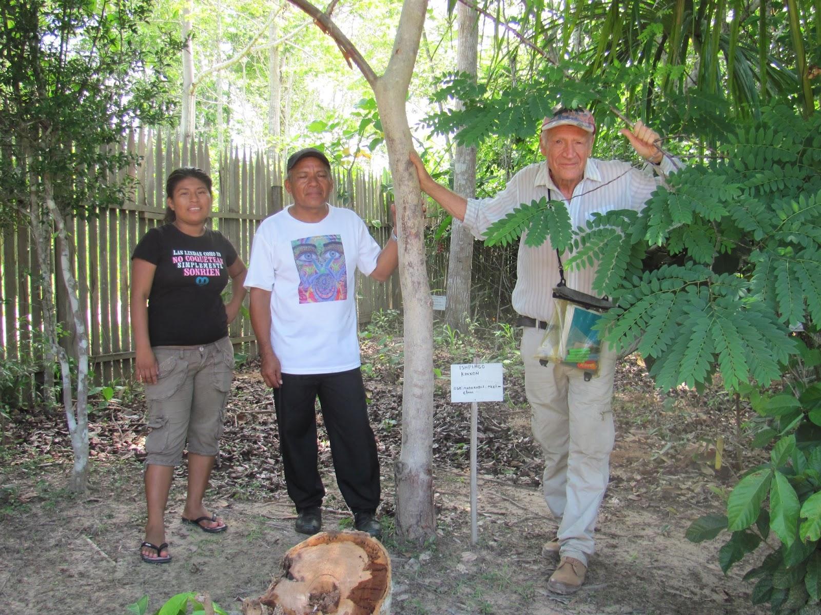 Bienvenue sur l 39 association culturelle lupuna jardin for Le jardin 75015