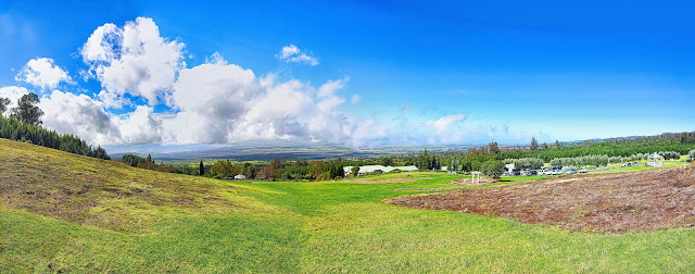 Ali'i Kula Lavender Farm view