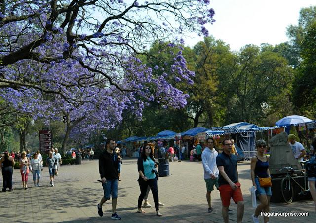 Passeio pelo Bosque de Chapultepec, Cidade do México