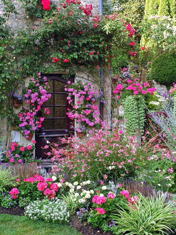 7 Steps to Creating a Quaint English Garden | My Enchanting Cottage