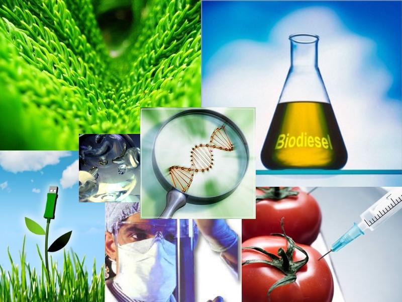 zootecnia: biotecnologia