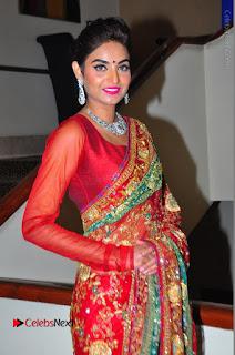 Model Sharon Fernandes Stills in Red Saree at Trendz Exhibition Launch  0044.JPG