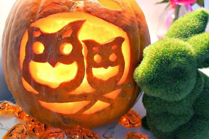 Pumpkin Carving! | Happy Halloween | Cate Renée