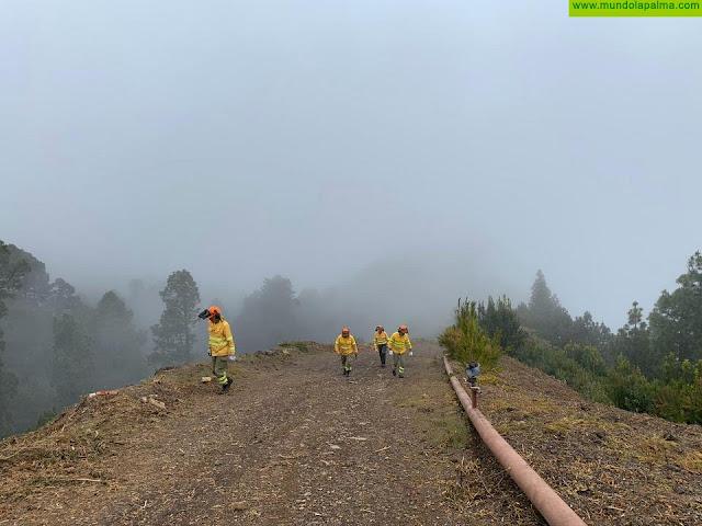 Medio Ambiente realiza labores de mantenimiento y limpieza en el cortafuegos y la pista forestal de Gallegos