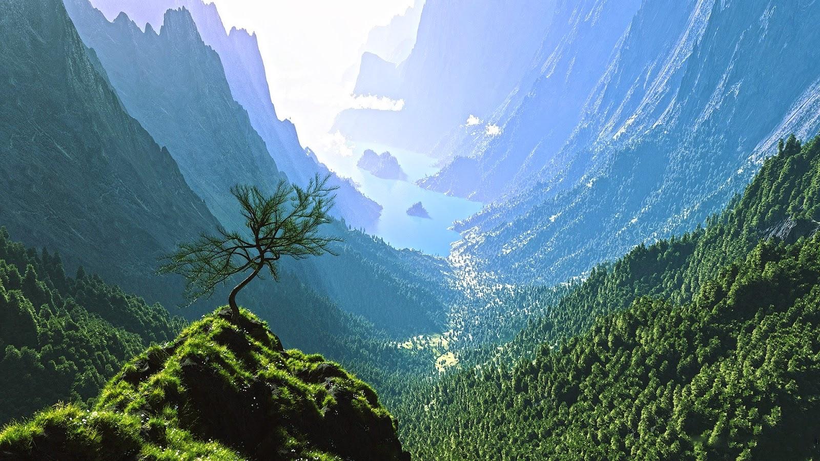 londo skala vegetation