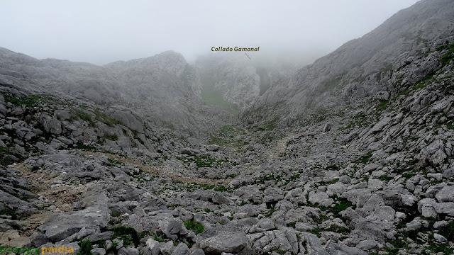 Camino del collado Gamonal