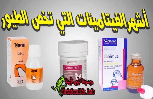 فيتامينات تخص طيور الزينة اشهرها ودواعي الإستعمال