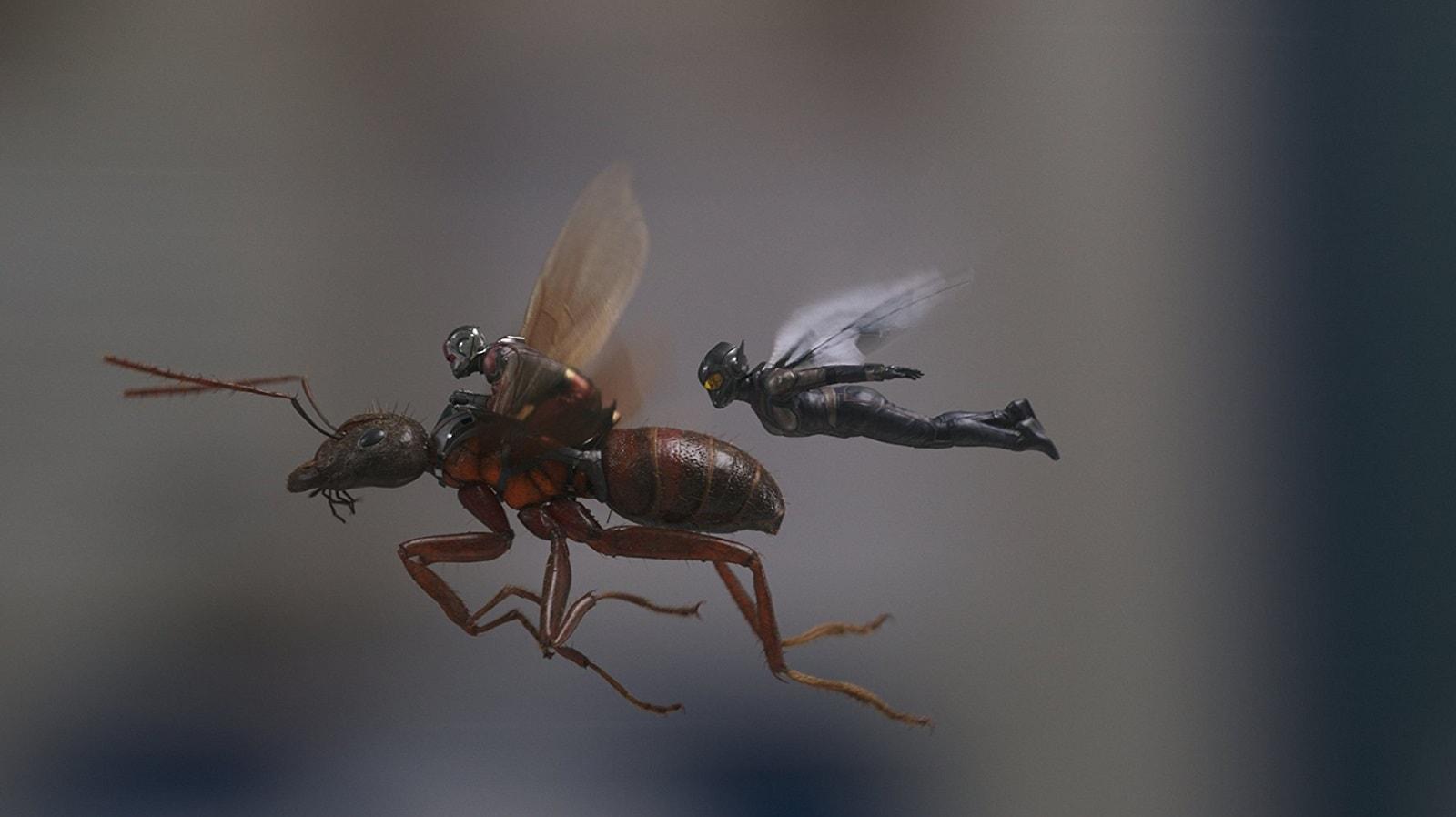 Человек-муравей и Оса, Человек-муравей 2, Фантастика, Рецензия, Обзор, Отзыв, Мнение, Ant-Man and The Wasp, Ant-Man, SciFi, Review, Marvel, MCU