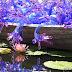 チフリーのグラスアート展 ニューヨーク植物園