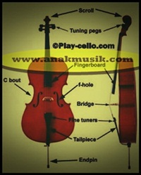 Bagian – bagian yang terdapat pada Bow dan Cello