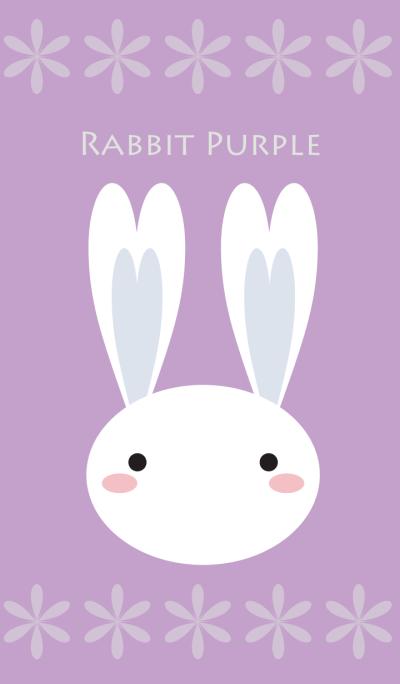 Rabbit Purple