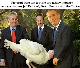 thanksgiving-memes