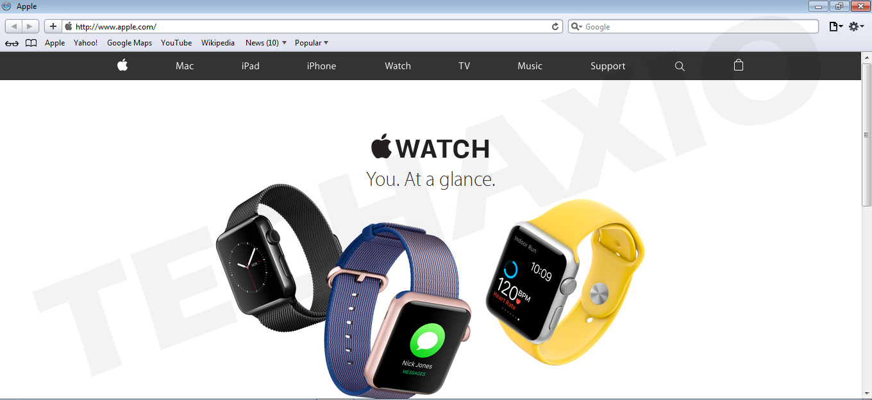 Apple Safari Browser Screenshot