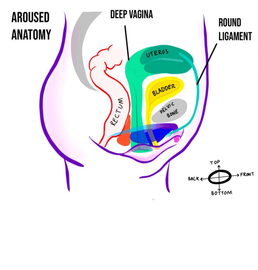 Free female orgasm cunnilinguous video