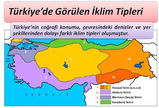 Türkiye'de İklim Tipleri ve Bitki Örtüsü