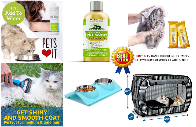 Best Sellers in cat care by Amazon