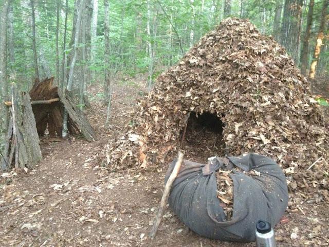 Debris Hut Shelter http://www.identitas.net/