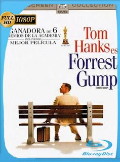 Forrest Gump 1994 HD [1080p] Latino [GoogleDrive] SilvestreHD