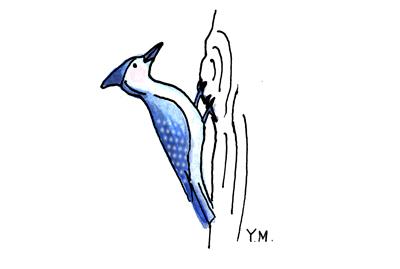 Woodpecker by Yukié Matsushita