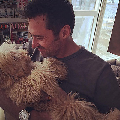 The National Dog Day Hugh Jackman