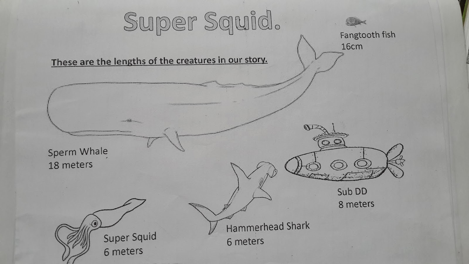 Smarties Grade 2 Super Squid